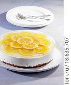 Купить «Cheesecake with lemon slices», фото № 18635707, снято 27 мая 2018 г. (c) easy Fotostock / Фотобанк Лори