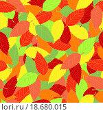 Осенние листья. Стоковая иллюстрация, иллюстратор Максим Сиротинин / Фотобанк Лори