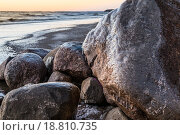 Берег Финского залива ранней зимой. Стоковое фото, фотограф Игорь Акимов / Фотобанк Лори