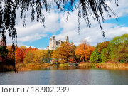 Купить «Central Park», фото № 18902239, снято 20 января 2020 г. (c) easy Fotostock / Фотобанк Лори
