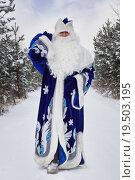 Дед Мороз с мешком подарков на плече идет по дороге в лесу. Стоковое фото, фотограф Дмитрий Черевко / Фотобанк Лори
