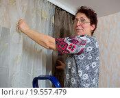 Купить «Пожилая женщина поправляет шторы, стоя на стремянке», эксклюзивное фото № 19557479, снято 25 декабря 2015 г. (c) Вячеслав Палес / Фотобанк Лори
