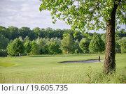 Купить «tree on golf course», фото № 19605735, снято 8 июля 2020 г. (c) easy Fotostock / Фотобанк Лори