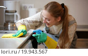 Portrait of positive housewife cleaning with supplies in kitchen. Стоковое видео, видеограф Яков Филимонов / Фотобанк Лори