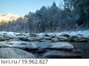Лесной ручей. Forest stream. Стоковое фото, фотограф Алексей Грим / Фотобанк Лори