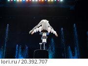 Купить «RUSSIA, MOSCOW - 18 DEC, 2014: Performer is doing tricks and standing on the head on a cylinders at Aquamarine circus.», фото № 20392707, снято 18 декабря 2014 г. (c) Losevsky Pavel / Фотобанк Лори