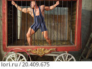 Strongman tries to break free from cage for animals. Стоковое фото, фотограф Losevsky Pavel / Фотобанк Лори