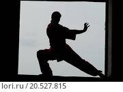 Купить «Shaolin warriors wushoo man silhouette practice martial art outdoor. Kung fu», фото № 20527815, снято 10 августа 2011 г. (c) easy Fotostock / Фотобанк Лори
