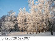 Зимний пейзаж. Стоковое фото, фотограф Фотин Андрей / Фотобанк Лори