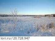 Купить «Зимний пейзаж с инеем в ясную погоду», эксклюзивное фото № 20728947, снято 29 декабря 2014 г. (c) Елена Коромыслова / Фотобанк Лори