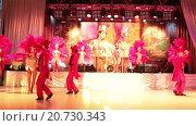 Купить «Выступление танцевальной группы на сцене во время торжественного приема выставки Металл-Экспо 2015, Москва», видеоролик № 20730343, снято 21 января 2016 г. (c) Кекяляйнен Андрей / Фотобанк Лори