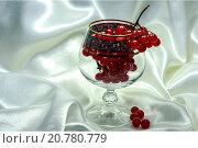 Рюмка с ягодами калины. Стоковое фото, фотограф Sergey Borisov / Фотобанк Лори