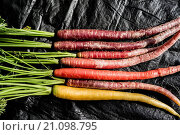 Купить «Close-up of multi-colored (rainbow) organic carrots.», фото № 21098795, снято 10 января 2015 г. (c) age Fotostock / Фотобанк Лори