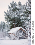 Купить «Избушка на опушке, январь», фото № 21242863, снято 25 января 2016 г. (c) Александр Романов / Фотобанк Лори