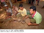 Купить «Warli musicians playing at wedding, Raitali Village, Dahanu, Maharashtra, India.», фото № 21470955, снято 24 февраля 2008 г. (c) age Fotostock / Фотобанк Лори