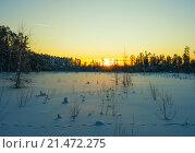 Купить «Зимнее заснеженное болото в Сибири на заката солнца», фото № 21472275, снято 23 января 2016 г. (c) Алексей Маринченко / Фотобанк Лори