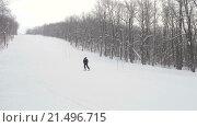 Купить «Горнолыжник, скоростной спуск на лыжах в лесу», видеоролик № 21496715, снято 27 января 2016 г. (c) Алексндр Сидоренко / Фотобанк Лори
