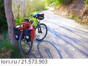 Купить «MTB Bicycle touring bike in a pine forest with pannier racks and saddlebag.», фото № 21573903, снято 28 марта 2015 г. (c) easy Fotostock / Фотобанк Лори