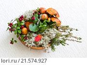 Осенняя флористическая композиция с грибами, мхом и ветками. Стоковое фото, фотограф Александр Замоткин / Фотобанк Лори