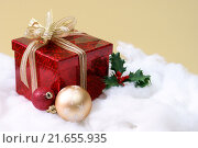 Купить «Christmas Seasonal Setting», фото № 21655935, снято 27 марта 2019 г. (c) PantherMedia / Фотобанк Лори
