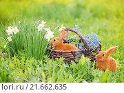 Купить «red little rabbits outdoor», фото № 21662635, снято 9 мая 2015 г. (c) Майя Крученкова / Фотобанк Лори