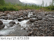 Купить «Река Бучарама, плато Путорана», фото № 21673039, снято 29 июля 2011 г. (c) Сергей Дрозд / Фотобанк Лори