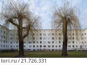 Купить «Dresden, Germany, the GEWOBAG settlement in Dresden-Gruna», фото № 21726331, снято 8 марта 2015 г. (c) Caro Photoagency / Фотобанк Лори