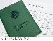 Трудовая книжка лежит на трудовом договоре. Стоковое фото, фотограф Игорь Низов / Фотобанк Лори