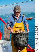Купить «Inshore fishing on Cardigan Bay at Aberdyfi / Aberdovey: a fisherman landing his catch of spider crabs , Wales UK.», фото № 21753011, снято 24 мая 2018 г. (c) age Fotostock / Фотобанк Лори