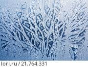 Купить «Морозный узор на стекле - ветви», фото № 21764331, снято 4 января 2016 г. (c) Диана Должикова / Фотобанк Лори