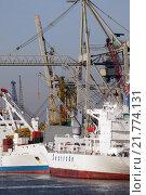 Купить «Hamburg, cargo freighter unloading», фото № 21774131, снято 23 января 2006 г. (c) Caro Photoagency / Фотобанк Лори