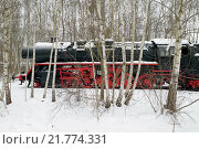 Berlin, Germany, steam locomotive in the snow in the nature park Schoeneberger Südgelände (2010 год). Редакционное фото, агентство Caro Photoagency / Фотобанк Лори