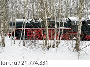 Купить «Berlin, Germany, steam locomotive in the snow in the nature park Schoeneberger Südgelände», фото № 21774331, снято 20 января 2010 г. (c) Caro Photoagency / Фотобанк Лори