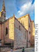 Купить «El Burgo de Osma, Spain, the Virgin's Assumption Cathedral of El Burgo de Osma», фото № 21796715, снято 12 августа 2010 г. (c) Caro Photoagency / Фотобанк Лори