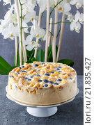 Купить «Blueberry and blackberry cheesecake with ladyfinger biscuit», фото № 21835427, снято 21 января 2020 г. (c) BE&W Photo / Фотобанк Лори