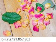 Купить «Лепестки розы», фото № 21857803, снято 28 января 2016 г. (c) Алёшина Оксана / Фотобанк Лори