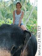 Женщина катается на слоне. Стоковое фото, фотограф Некрасов Андрей / Фотобанк Лори