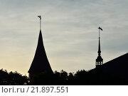 Купить «Силуэт Кафедрального собора в Калининграде, Россия», фото № 21897551, снято 3 мая 2014 г. (c) Сергей Трофименко / Фотобанк Лори