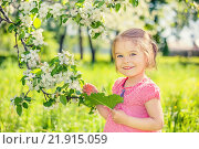 Купить «Happy little girl in apple tree garden», фото № 21915059, снято 18 августа 2018 г. (c) Sergey Borisov / Фотобанк Лори