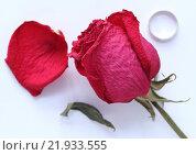 Высушенная роза, упавший лепесток и кольцо. Стоковое фото, фотограф Маргарита Варенникова / Фотобанк Лори