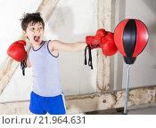 Купить «young boy as a boxer», фото № 21964631, снято 17 декабря 2017 г. (c) PantherMedia / Фотобанк Лори