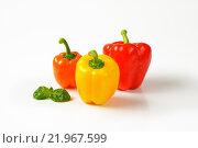 Купить «three ripe bell peppers», фото № 21967599, снято 16 июня 2019 г. (c) PantherMedia / Фотобанк Лори