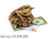 Купить «Жаба на монетах. Талисман фен-шуй», эксклюзивное фото № 21979255, снято 8 февраля 2016 г. (c) Юрий Морозов / Фотобанк Лори