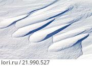 Купить «Природный зимний фон. Снежные заструги на льду озера Байкал», фото № 21990527, снято 28 февраля 2016 г. (c) Виктория Катьянова / Фотобанк Лори