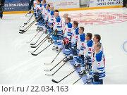 Купить «Хоккейные легенды Финляндии на хоккейном матче Россия - Финляндия. Полуфинал Лиги Легенд мирового хоккея. ВТБ Ледовый дворец, Москва. Репортаж», фото № 22034163, снято 29 января 2016 г. (c) Pukhov K / Фотобанк Лори