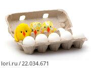 Яйца и цыплята в открытой коробке. Стоковое фото, фотограф Роман Червов / Фотобанк Лори