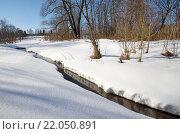 Купить «Река Скорогодайка в конце зимы», фото № 22050891, снято 28 февраля 2016 г. (c) Елена Коромыслова / Фотобанк Лори