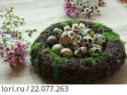 Перепелиные яйца на Пасху. Стоковое фото, фотограф Юлия Рассохина / Фотобанк Лори