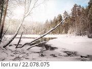 Купить «Зимний пейзаж. Озеро Коллать. Россия. Карелия», фото № 22078075, снято 28 февраля 2016 г. (c) Наталья Осипова / Фотобанк Лори