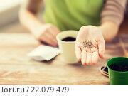 Купить «close up of woman hand holding seeds», фото № 22079479, снято 3 марта 2015 г. (c) Syda Productions / Фотобанк Лори